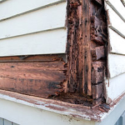 Example of Structural Termite damage Home Inspection Authority Southern California Residential & Commerical Inspections