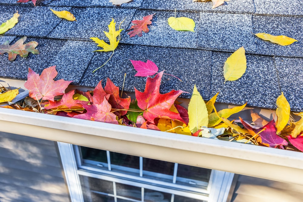 5 Fall Home Maintenance Tips
