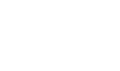 Colorado Spring Home Inspection Skyview Logo